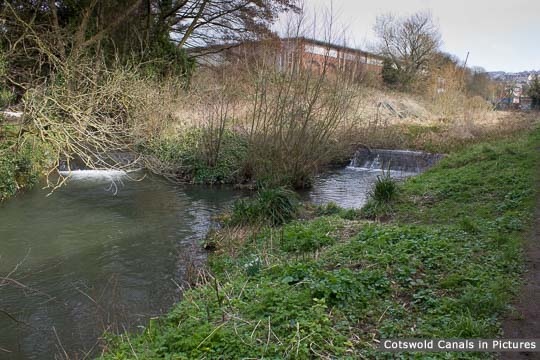 Painswick Stream joins Stroudwater Navigation