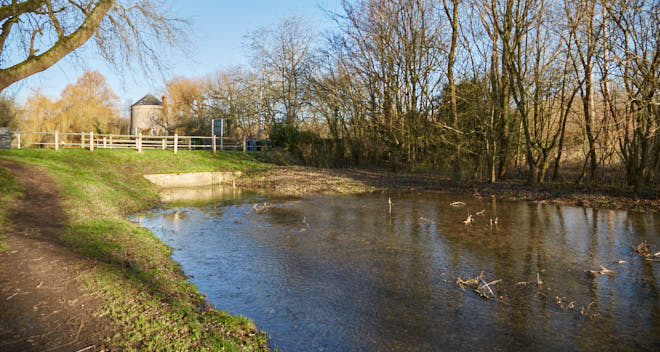 Thames & Severn Canal near Cerney Wick