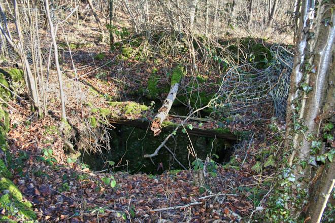 Open Tunnel shaft in Hayley Wood