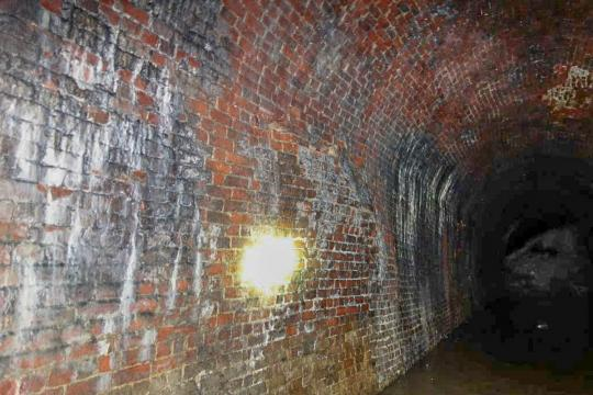 Sapperton Canal Tunnel - wall bulge
