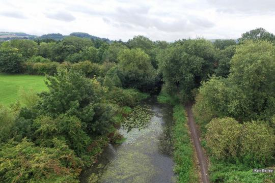 Ocean Railway Bridge site (in trees). View towards Stroud.